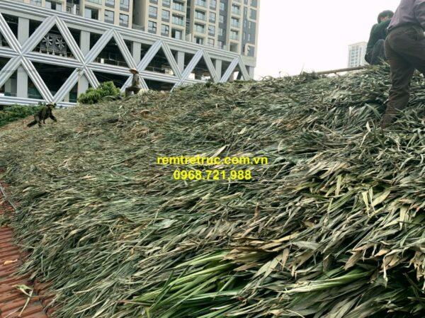 thi công nhà mái lá 2